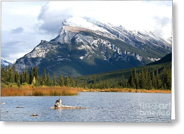 Greeting Card featuring the photograph Mt Rundle Banff National Park by Bob and Nancy Kendrick