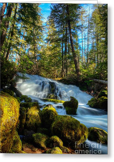 Pearsoney Falls Greeting Card