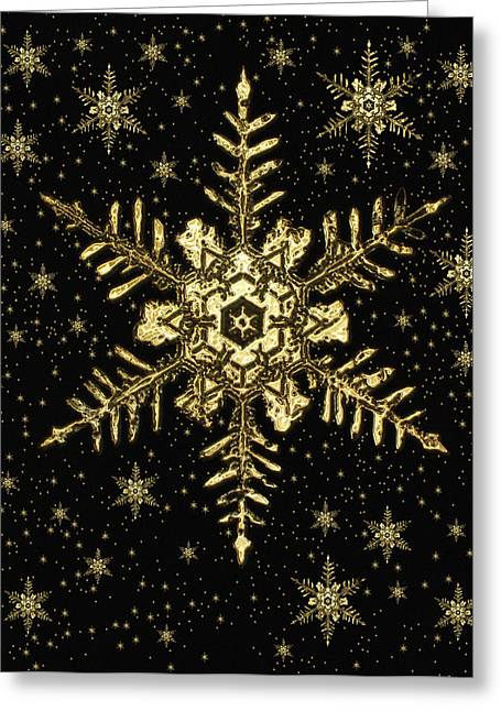 Snowflakes Greeting Card by Mehau Kulyk