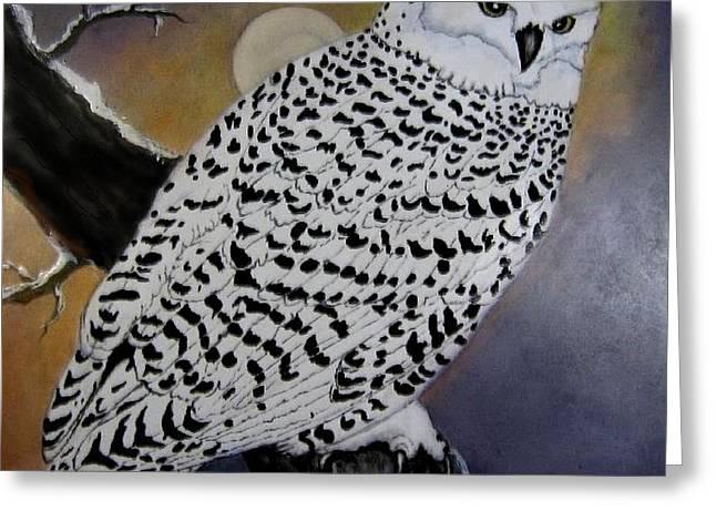 Snowy Owl And Moon Greeting Card by Sandra Maddox