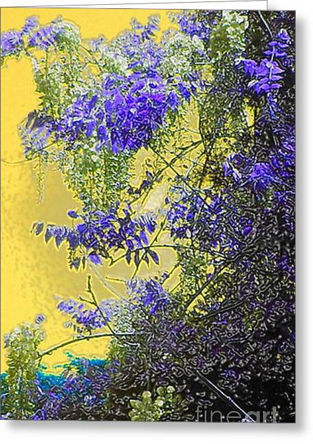 Greeting Card featuring the photograph Sun Setting On Wisteria by Holly Martinson