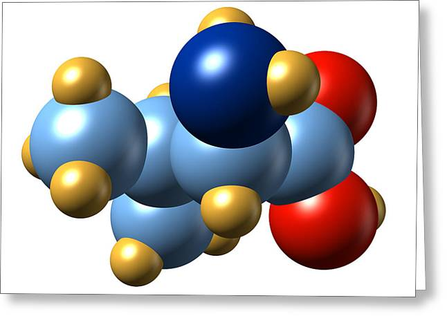 Valine, Molecular Model Greeting Card by Dr Mark J. Winter