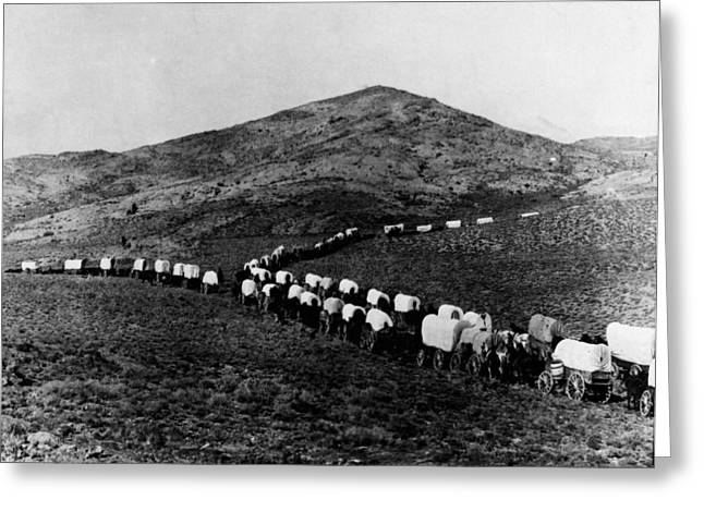 Wagon Train Greeting Card by Granger