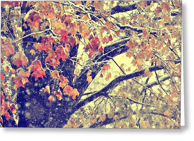 Winter Autumn Snows Greeting Card by JAMART Photography