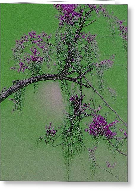 Greeting Card featuring the photograph Wisteria by Holly Martinson