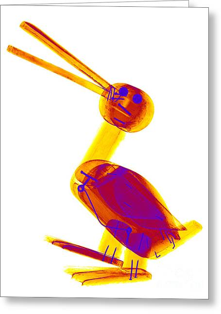 X-ray Of A Wooden Duck Toy Greeting Card by Ted Kinsman