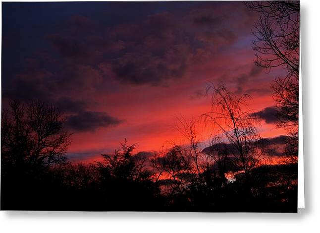 2012 Sunrise In My Back Yard Greeting Card by Paul SEQUENCE Ferguson             sequence dot net