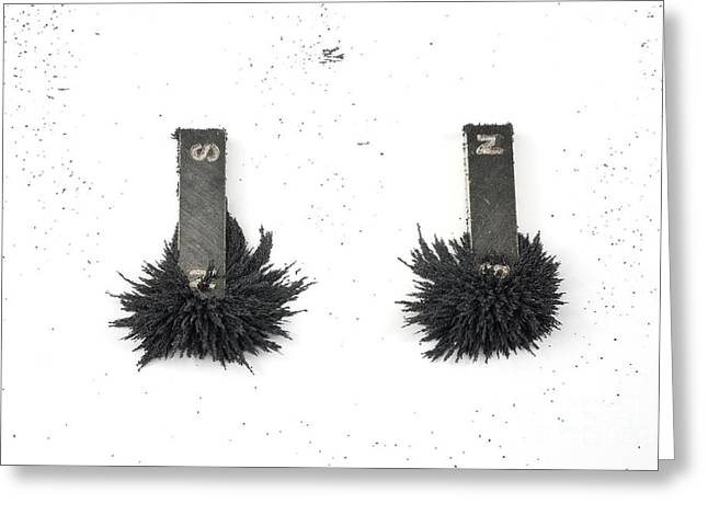 Magnetism Greeting Card by Photo Researchers, Inc.