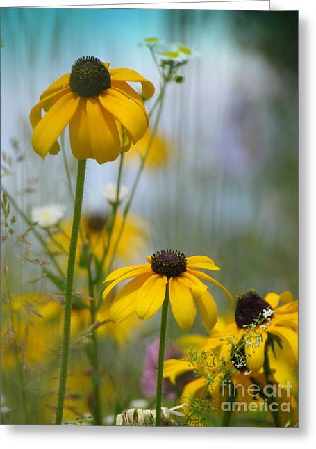 Greeting Card featuring the photograph Wildflowers by France Laliberte
