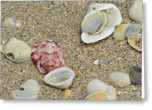 Ocean Tides Series Greeting Card by Terry Troupe