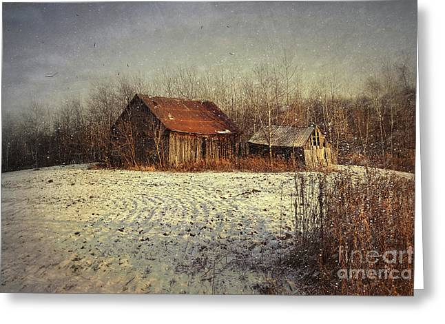 Abandoned Barn With Snow Falling Greeting Card by Sandra Cunningham