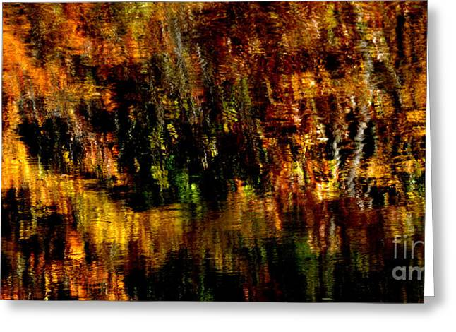 Abstract Babcock State Park Greeting Card by Thomas R Fletcher