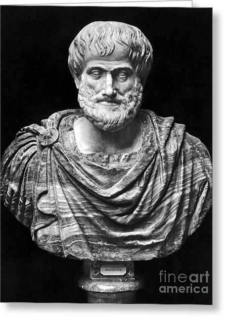 Aristotle (384-322 B.c.) Greeting Card by Granger