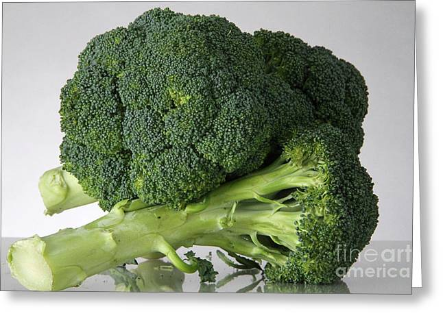 Broccoli Greeting Card by Photo Researchers, Inc.