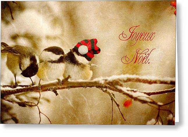 Christmas Chickadees Greeting Card by Kelly Nelson