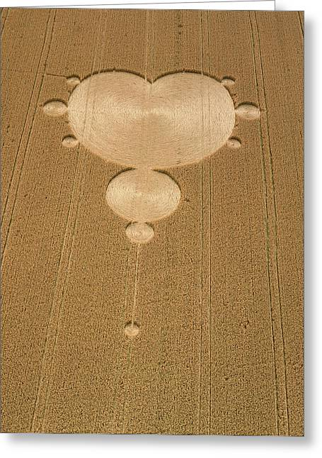 Crop Formation In Form Of Mandelbrot Set Greeting Card by David Parker