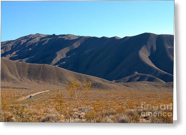 Death Valley California Greeting Card by Anne Kitzman