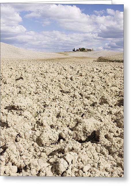 Desert Landscape In La Crete Sinesi Greeting Card