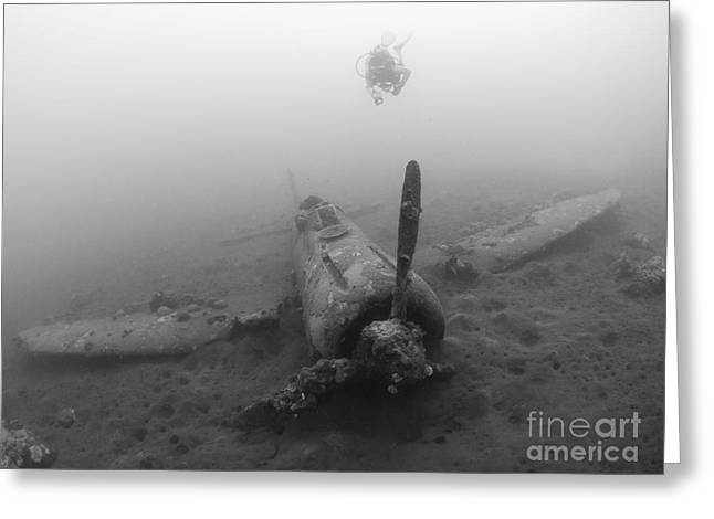 Diver Explores The Wreck Greeting Card by Steve Jones