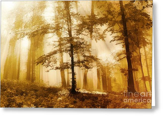 Golden Forest  Greeting Card by Odon Czintos