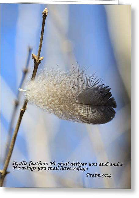 In His Feathers Greeting Card by Rick Rauzi