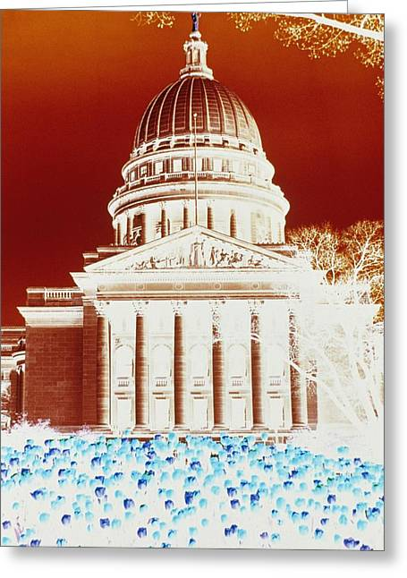 Photographic Cross-processing Creates Greeting Card by Stacy Gold