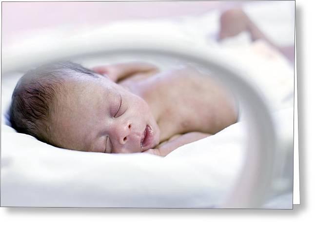 Premature Baby Greeting Card