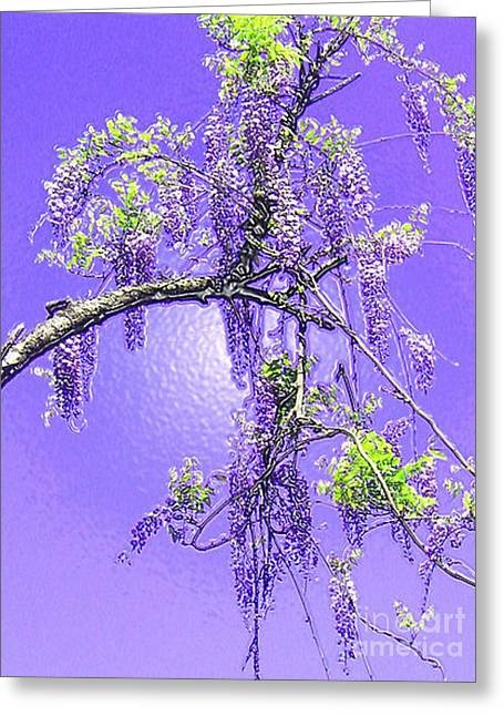 Greeting Card featuring the photograph Purple Passion Wisteria by Holly Martinson