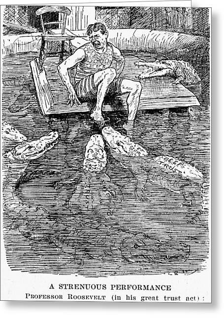 Roosevelt Cartoon, 1906 Greeting Card