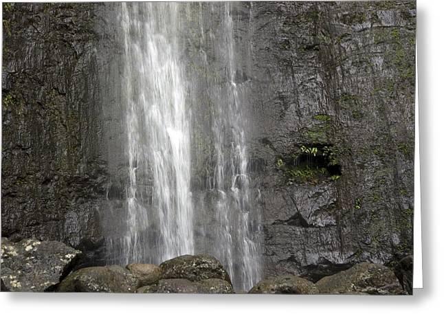 The Manoa Falls Waterfall In Honolulu Greeting Card