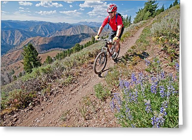 Mountain Bike Greeting Card by Elijah Weber