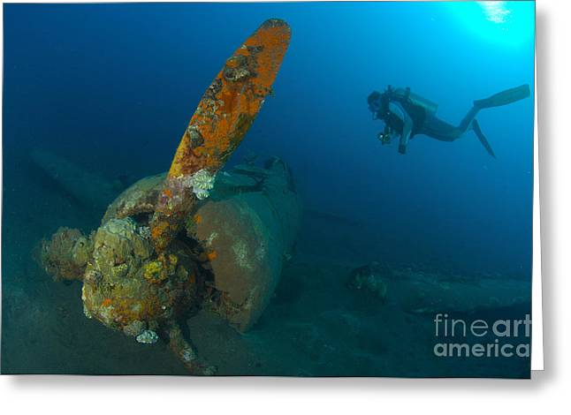 Diver Explores The Wreck Greeting Card
