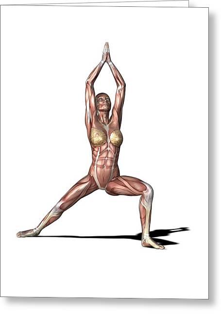 Female Muscles, Artwork Greeting Card