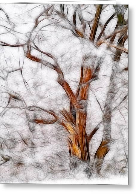 Frosty Landscape Greeting Card