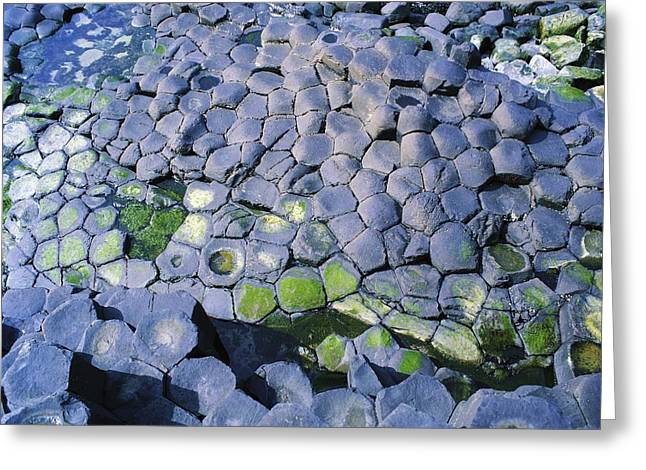 Giants Causeway, Co Antrim, Ireland Greeting Card by The Irish Image Collection