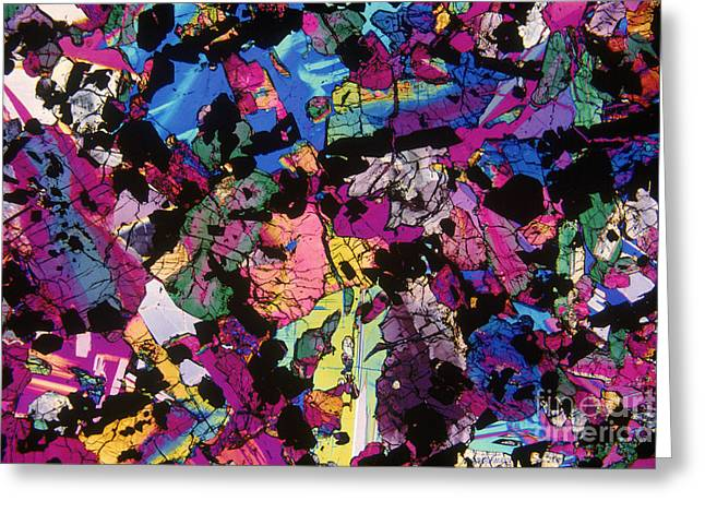 Moon Rock, Transmitted Light Micrograph Greeting Card by Michael W. Davidson - FSU