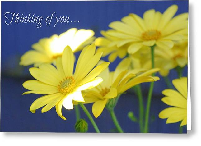 Thinking Of You... Greeting Card by Cathie Tyler