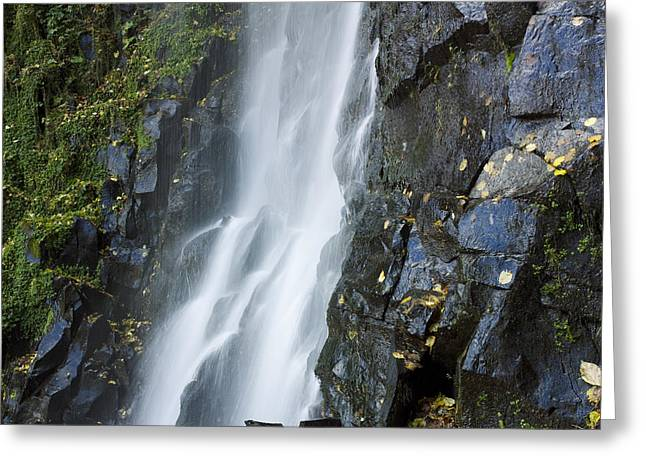 Waterfall Of Vaucoux. Puy De Dome. Auvergne. France Greeting Card by Bernard Jaubert