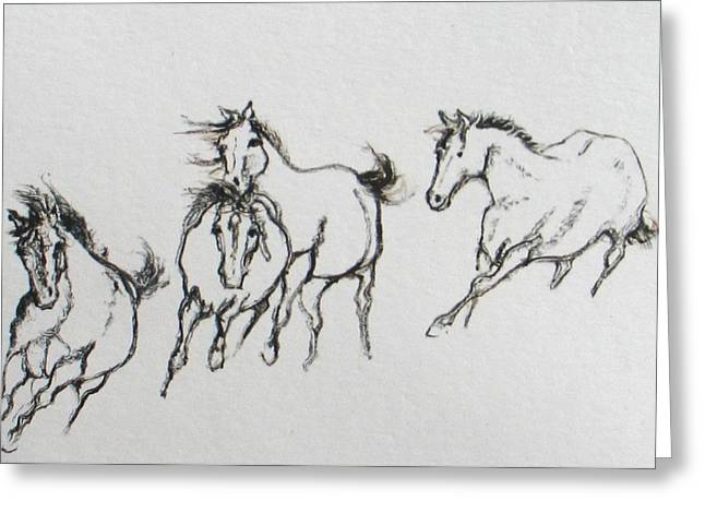 4 Wild Horses  Greeting Card by Elizabeth Parashis