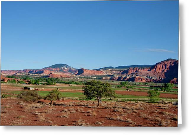 Capitol Reef National Park Greeting Card by Southern Utah  Photography