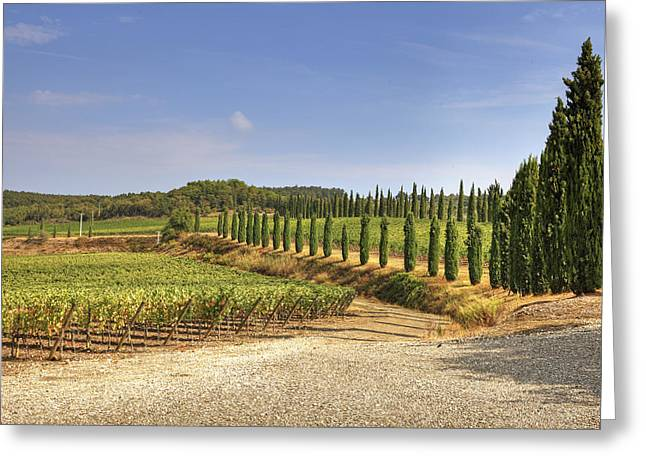 Tuscany Greeting Card by Joana Kruse