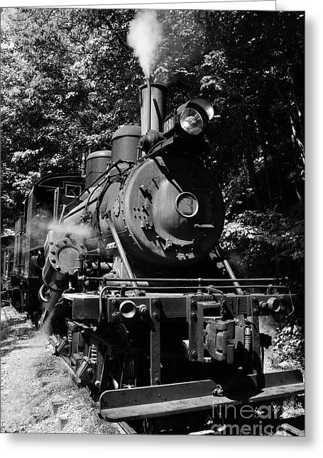 Climax Geared Locomotive Greeting Card by Thomas R Fletcher