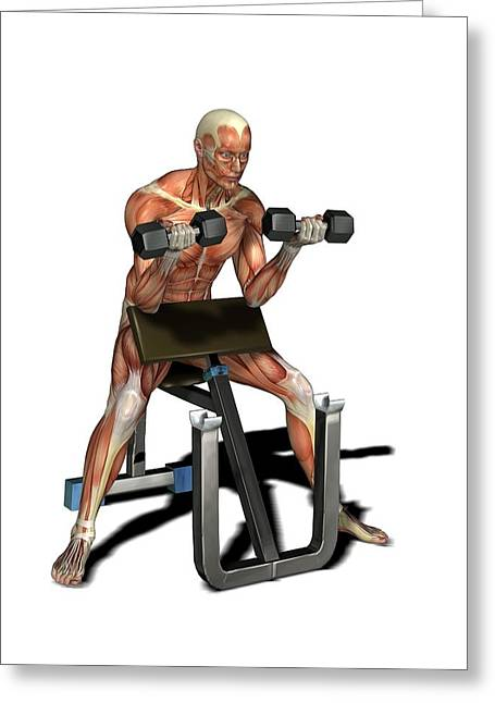 Male Muscles, Artwork Greeting Card