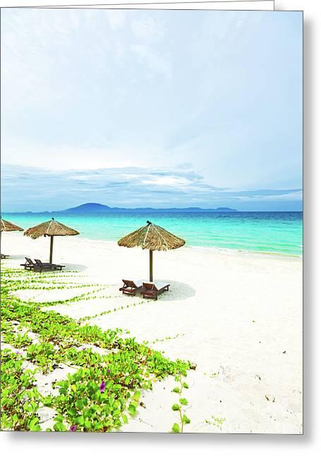 Sandy Tropical Beach Greeting Card