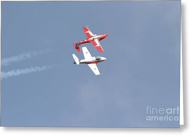 The Snowbirds 431 Air Demonstration Greeting Card by Terry Moore