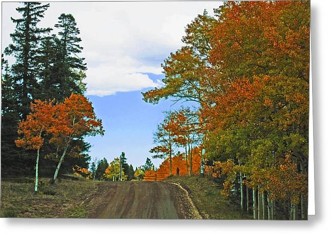 Fall Colorado Series Greeting Card by Tammy Sutherland