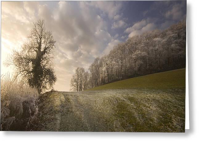 Frosty Landscape Greeting Card by Angel Ciesniarska