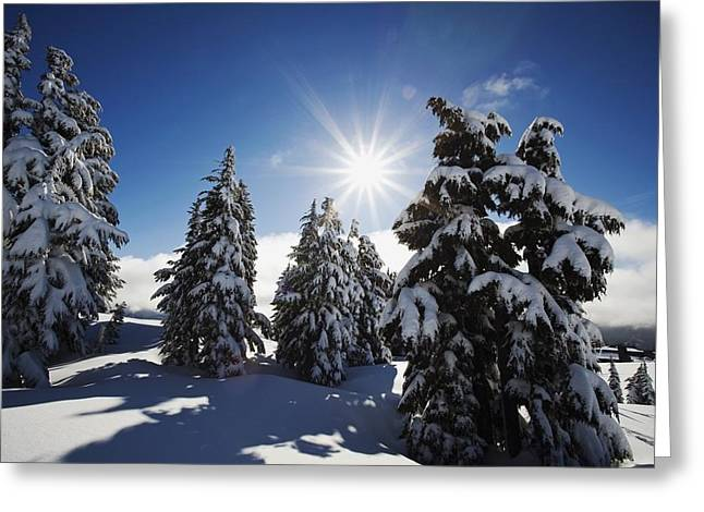 Oregon Cascades, Oregon, United States Greeting Card by Craig Tuttle