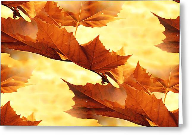 Autumn Greeting Card by Design Windmill