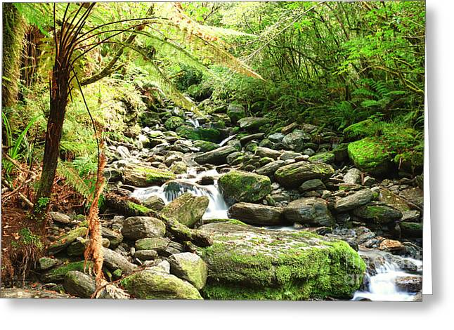 Stream Greeting Card by MotHaiBaPhoto Prints